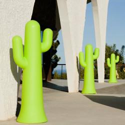 Pancho - cactus lumineux - Newgarden
